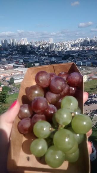 Degustação de uva na Festa da Uva