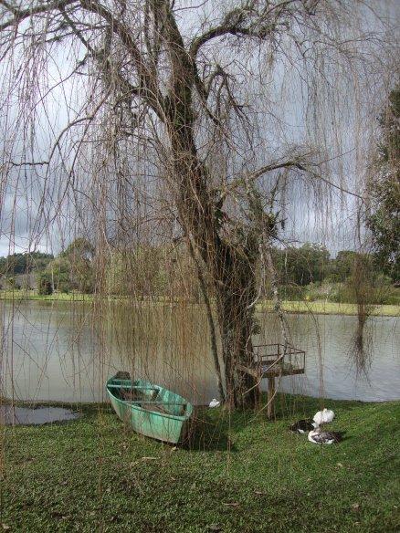 lago na Vinícola Dal Pizzol