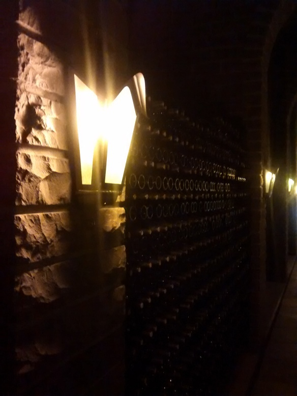 Cave da Vinícola Casa Valduga. Foto: Kelly Pelisser