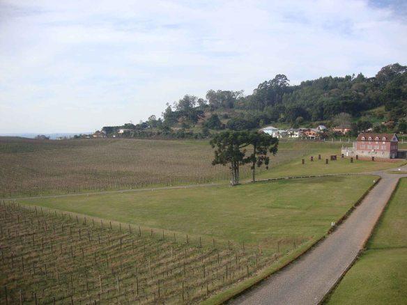 vinícola Luiz Argenta